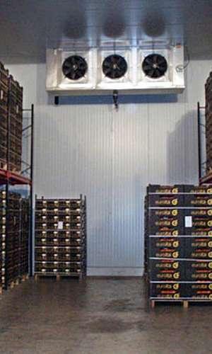 Manutenção em câmaras frigoríficas